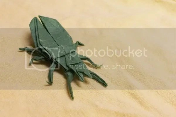 Origami ground beetle