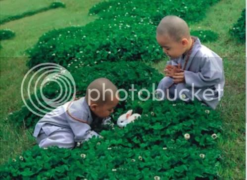 https://i0.wp.com/i86.photobucket.com/albums/k88/suonglam_2006/MotCoiThienNhan/lichdinhhoi-2-1.jpg