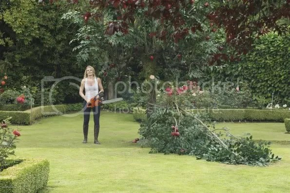 Once Upon A Time, Emma cuts down the tree