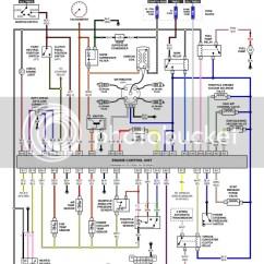 Bmw E46 Ecu Wiring Diagram Human Skin Unlabeled Suzuki Apv Schematic Description Engine Diagrams
