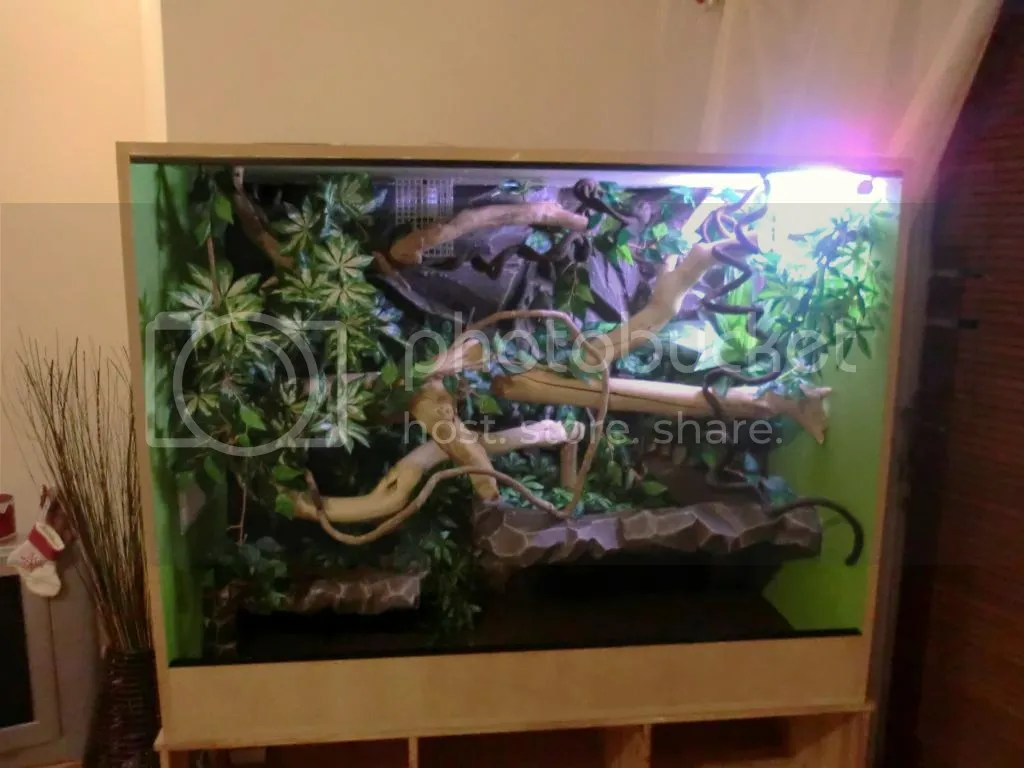 Reptile Cage Carpet Yamsixteen
