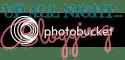 Up All Night Blogging