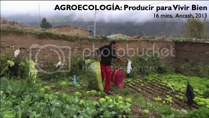 photo CaraacutetulaAGROECOLOGIacuteA2013_zps1ea1fe5b.jpg