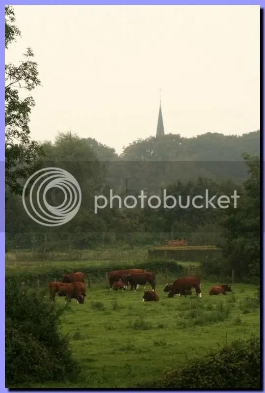 IMG_2861.jpg picture by Schipbeek