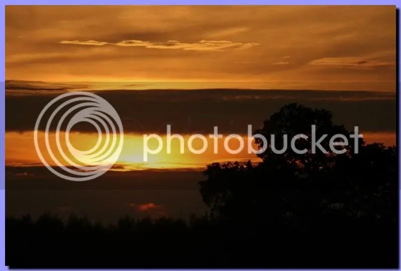 IMG_3349.jpg picture by Schipbeek