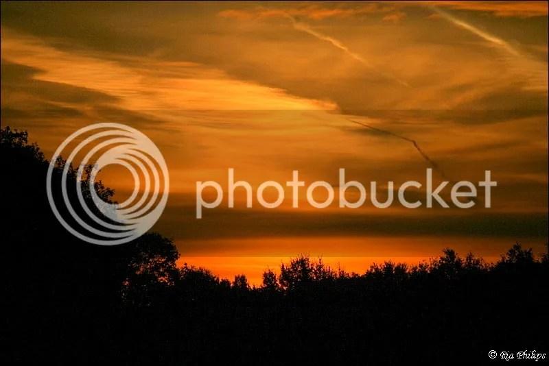 photo IMG_3661.jpg