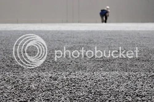Sunflower Seeds Ai WeiWei Tate 1
