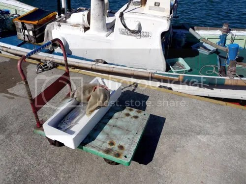 Oda Fishermen 7