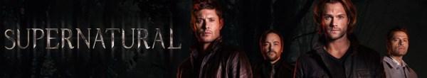 Supernatural S11E22 Ein ungleiches Buendnis GERMAN DUBBED DL 1080p BluRay x264-TVP