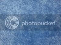 Blue Carpet Photo by cuivadecor | Photobucket