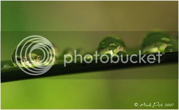 Log10-6-07-9.jpg