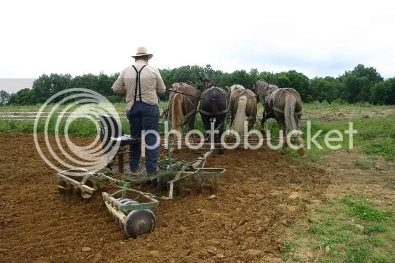 Amish Sawmill Kentucky