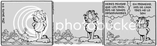 Garfield y los pájaros II