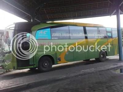 Sandy Putra Jember-Surabaya-Cirebon-Kuningan