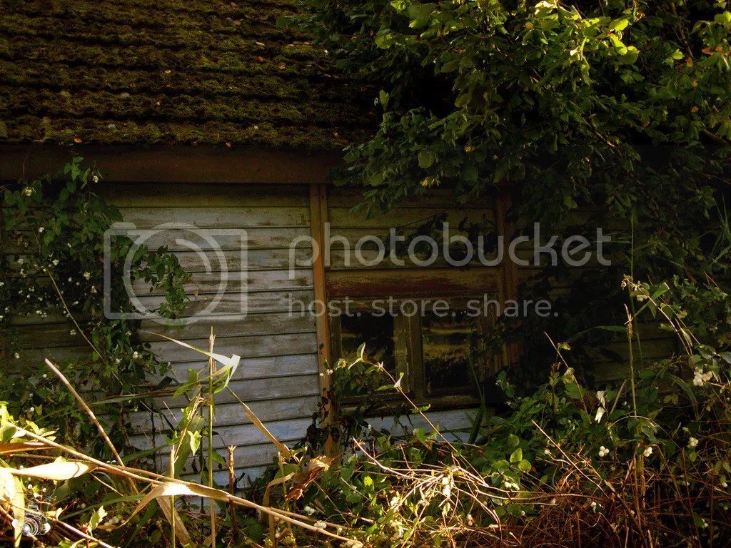 Old, abandoned wooden house in Neu Lübbenau in Germany