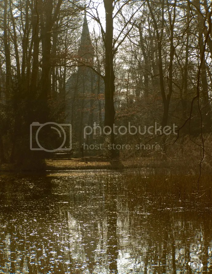 The silhuette of the castle at Schönefeld in Germany seen through the trees in the park.