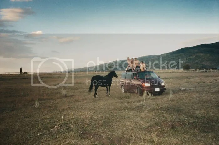 field,nude,horse