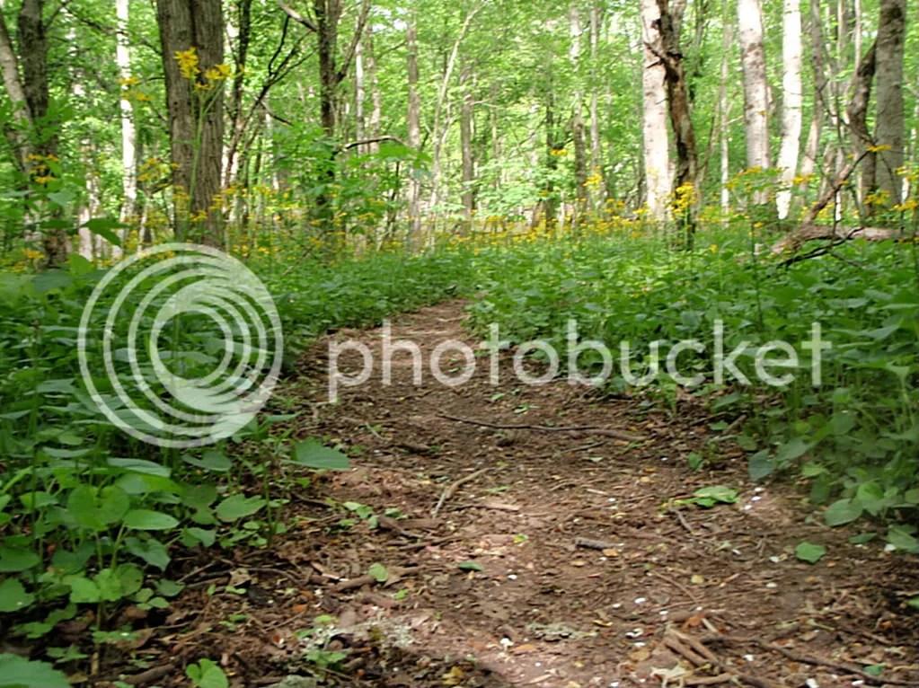 elkriver2010025.jpg picture by Bentrod2010