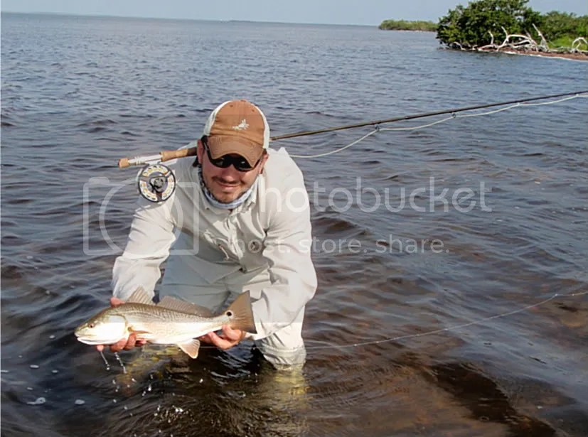 redfish102-1.jpg picture by Bentrod2010