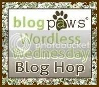 Wordless Wednesday 1 (5/5)