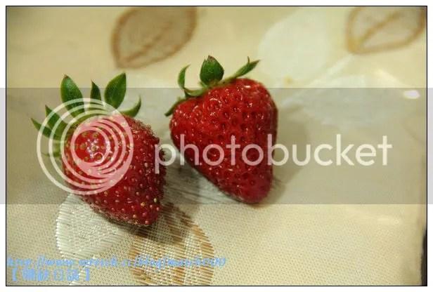 周末午後的草莓時光之【鳳林親親草莓園】 @ 補缺日誌 :: 痞客邦