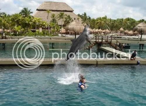 Dolfijnen in Xcaret
