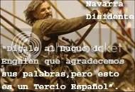 Navarra Disidente