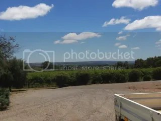 McLaren Vale Wine - Danshi Rise Wines (2/2)