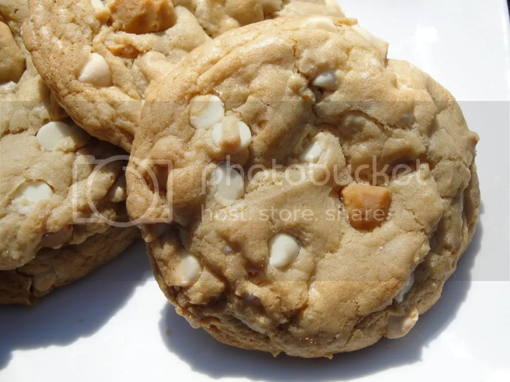White Chocolate Chip Macadamia Nut Cookies Pictures, Images and Photos