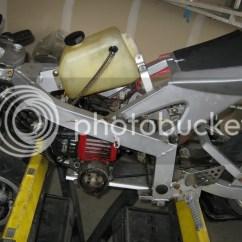 49cc Terminator Mini Chopper Wiring Diagram Cow Meat Basic Pocket Bike Safety