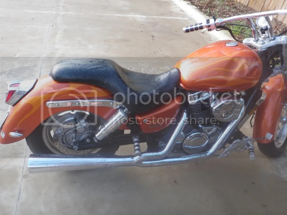 medium resolution of 2002 honda shadow sabre 1100 first bike ever 1 200 dollars the insanity begins