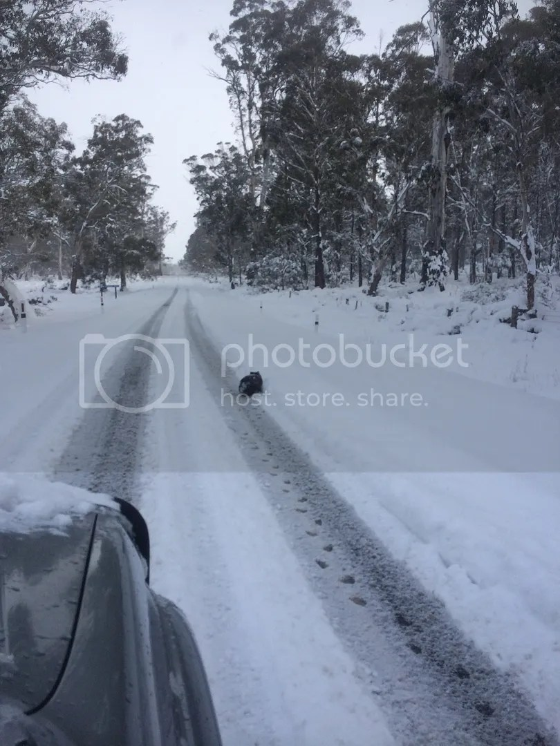 Low Level Snow Events Tasmania Crikey It S The Weather Cycles