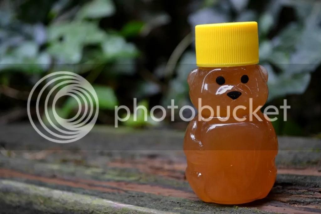 photo Bees6_zpswfdfkz06.jpg