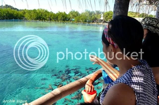 Juag Fish Sanctuary in Bicol