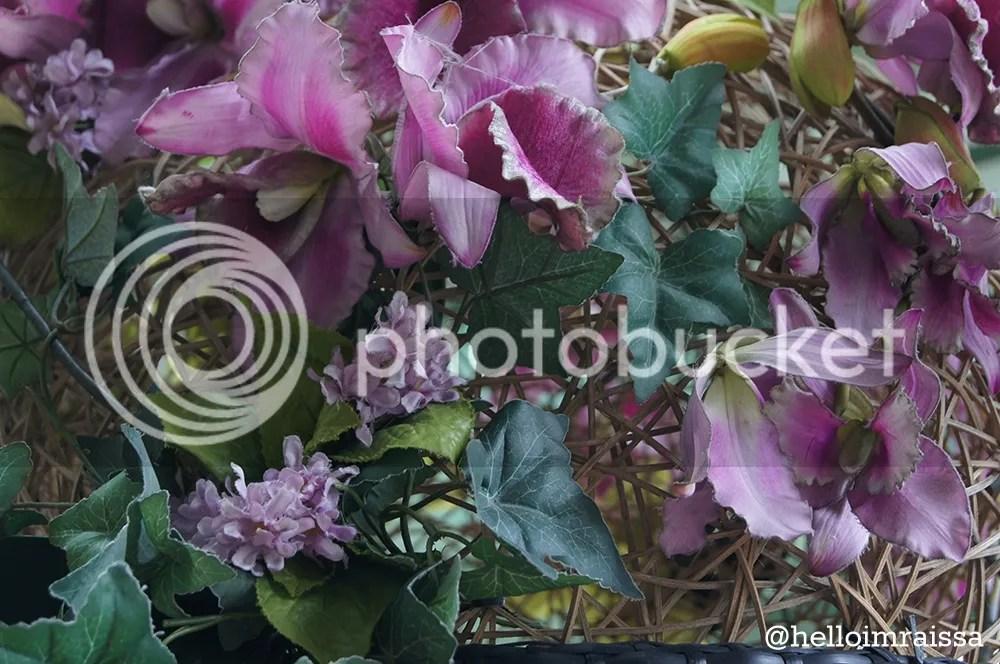 photo f1000d73-0941-4905-bff0-9ca04258bd60_zps00c2f85a.jpg