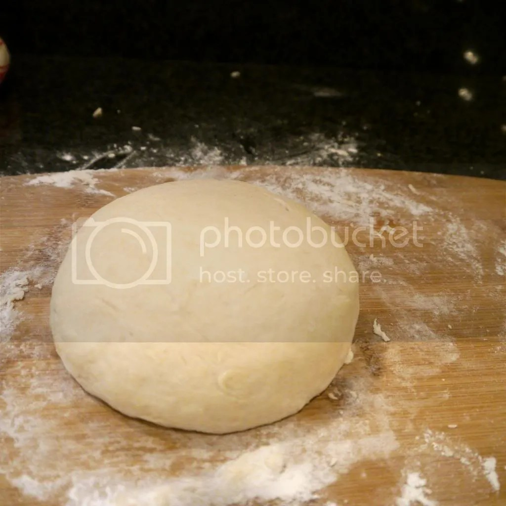 Roti Flatbread dough ball photo P1020961_zps967ff39a.jpg