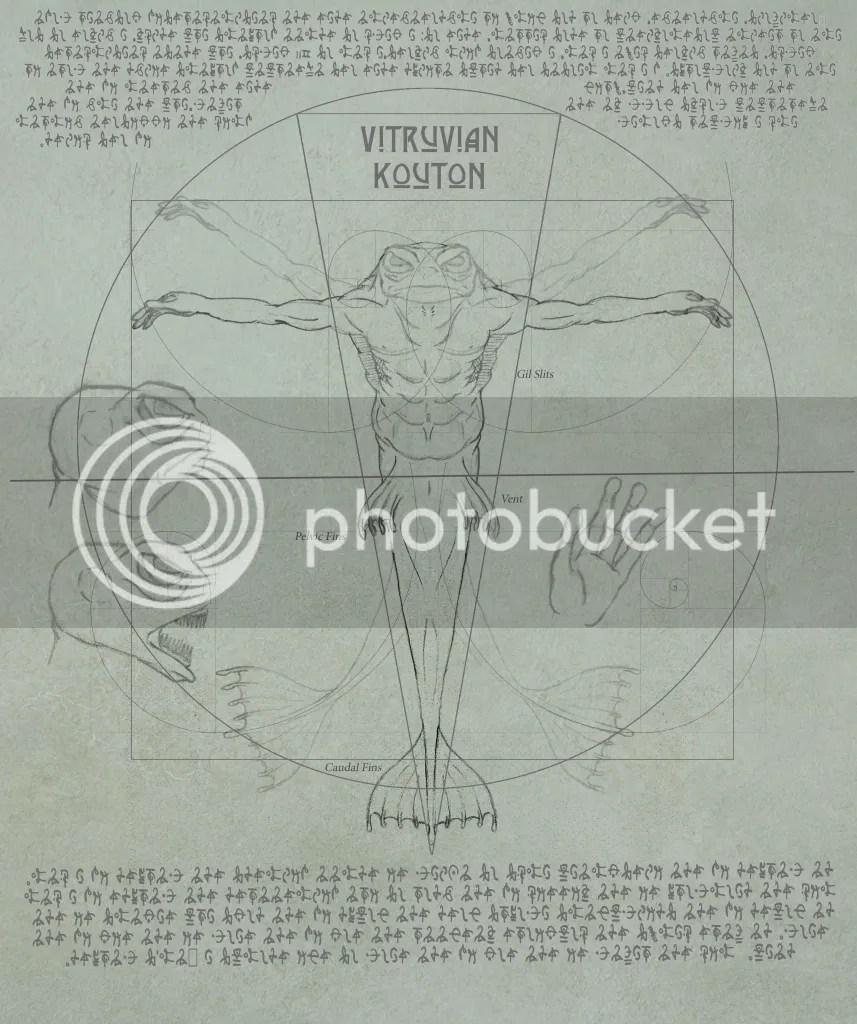 Vitruvian Kouton