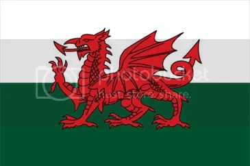 welsh dragon Pictures, Images and Photos