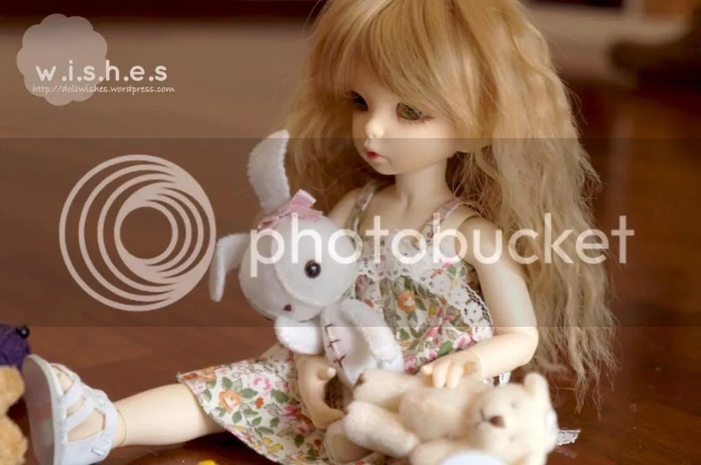 photo DSC02505_2_zps45798d7e.jpg