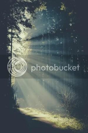 photo tumblr_mrwtydJpOw1sn3umxo1_500_zps69addab1.jpg