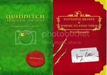 Quidditch & Beasts