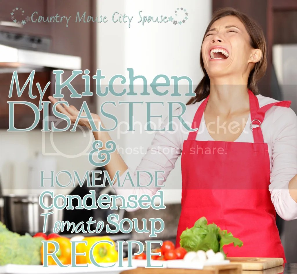 My Kitchen Disaster!! and My Homemade Condensed Tomato Soup Recipe- Country Mouse City Spouse