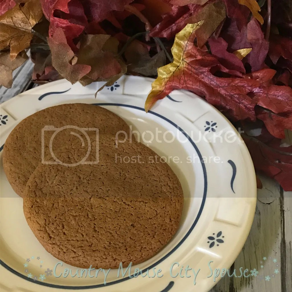 Old-Fashioned Homemade Gingersnaps- Country Mouse City Spouse I love using recipes that I know have been in my family for nearly 100 years. These Old Fashioned Ginger Snaps are one of my favorites, especially in Autumn.