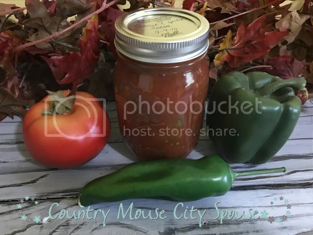 Sweet & Spicy Salsa- Country Mouse City Spouse