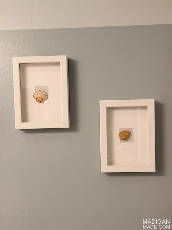 sea shell DIY wall art