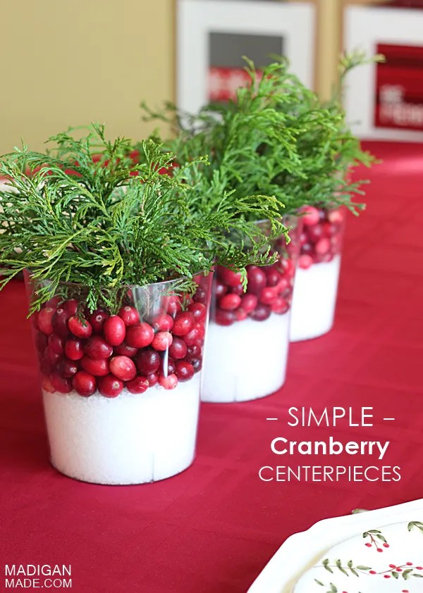Amazingly simple cranberry centerpiece idea. These would be perfect for fall or wintertime.