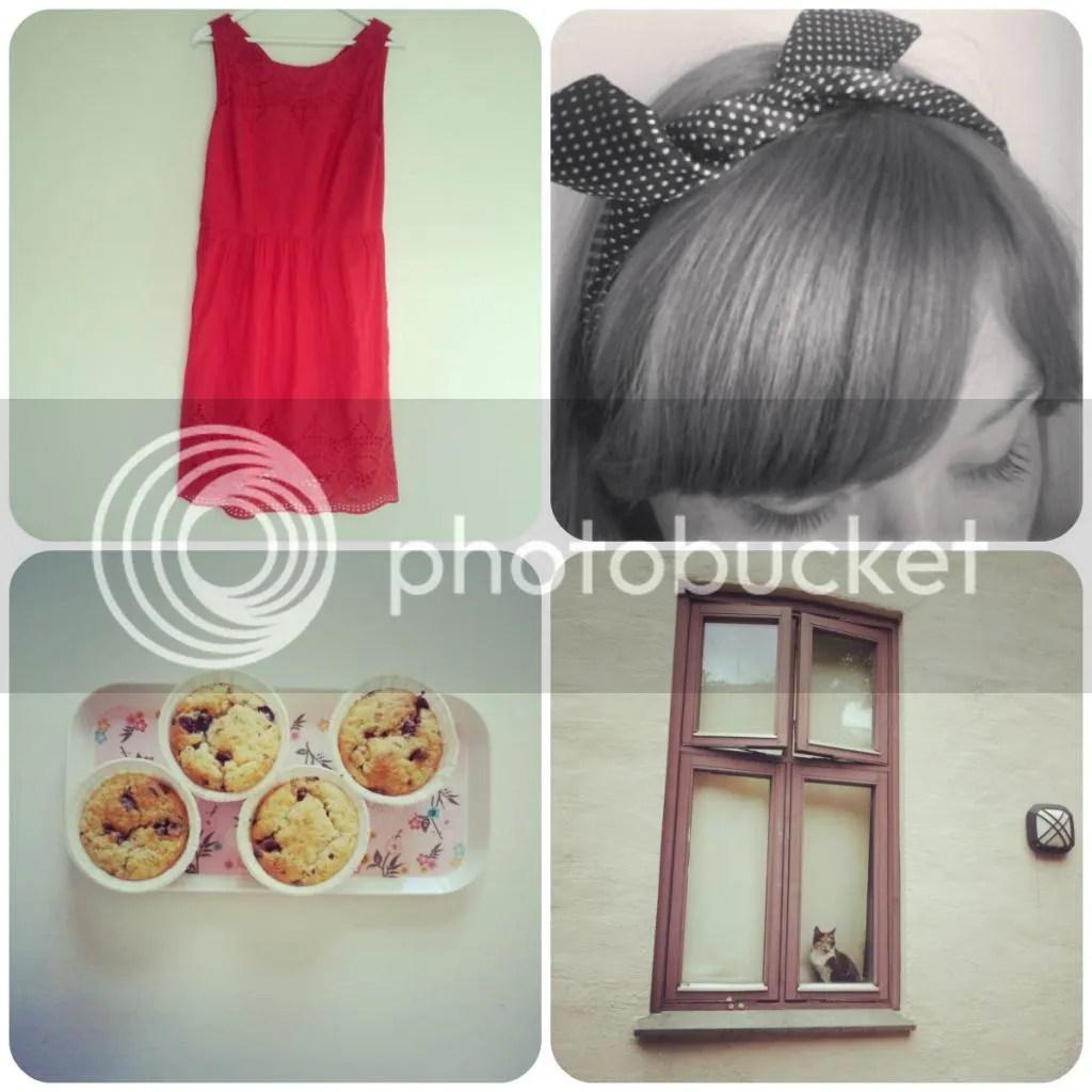 photo collage1_zpsc859006c.jpg