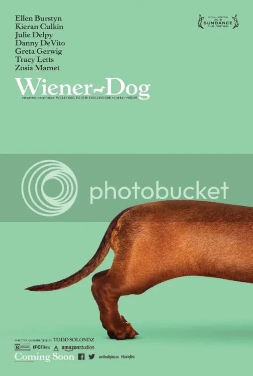 photo wiener_dog_zpsbwumiqbq.jpg