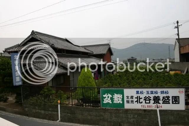 Kinashi Nursery 1