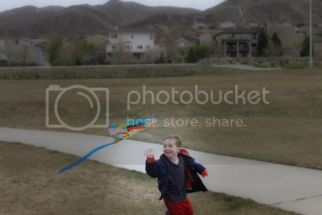 photo kite flying 1 of 1_zps64otwmbr.jpg